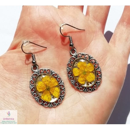 /2107-9574-thickbox/real-flower-resin-buttercup-dangle-earrings1.jpg